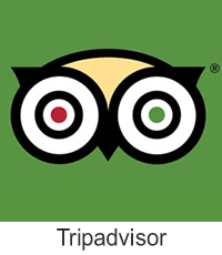 Tripadvisor Online Review Management With iBeFound Digital Marketing